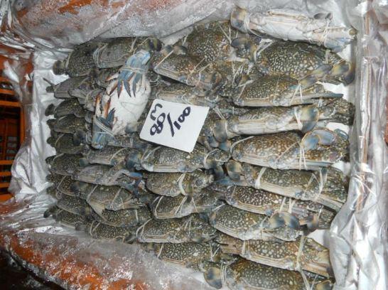 frozen Blue Crabs for sale