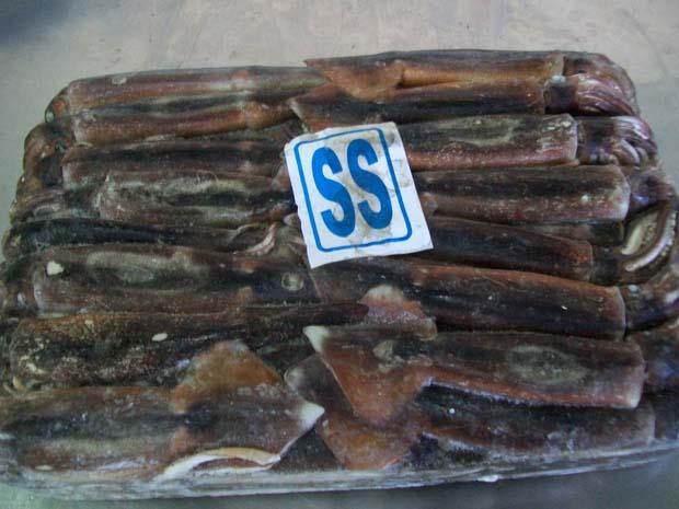 frozen Illex Squid block