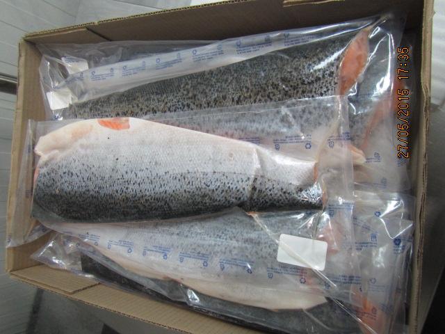 altantic salmon fillet