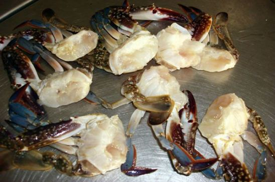 Blue Crabs for sale